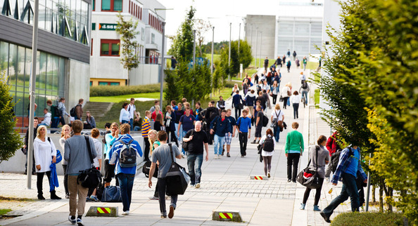 Image result for universities in Norway